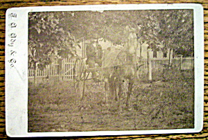 Off To Town - Cabinet Photo Of A Man With Horse & Cart