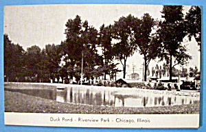 Duck Pond - Riverview Park Picture Postcard