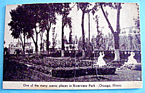 Riverview Park Scenic Place Picture Postcard (Chicago)
