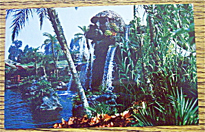 Pirate's Cove In Disneyland Postcard (Magic Kingdom)