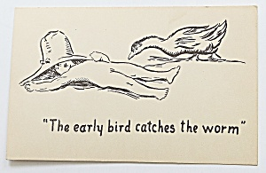 Early Bird Catches The Worm Postcard