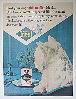 1964 Ideal Dog Food With Dog Looking At Can Of Food