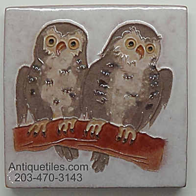 Desert House Crafts - Dhc - 2 Young Owls On Branch