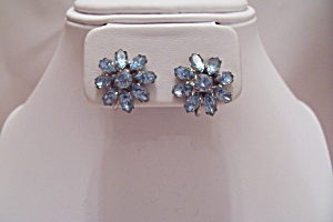 Pair Of Light Blue Rhinestone Clip-on Earrings