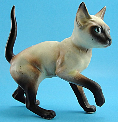Josef Original Siamese Cat