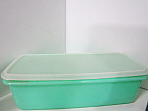 Vintage Tupperware Clear/large Green Celery Keeper