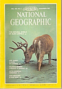 National Geographic Magazine - November 1981