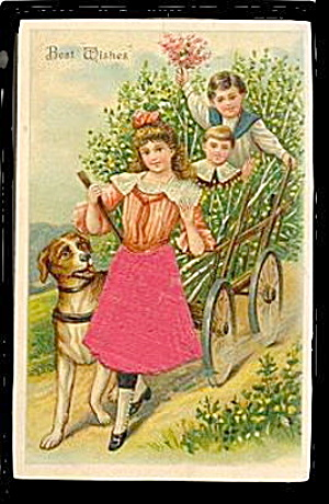 1909 Girl With Silk Dress, Children, Dog Postcard
