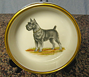 Vintage Jackson China Dog Bowl Vintage
