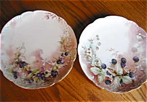 Antique Haviland Limoges Plates