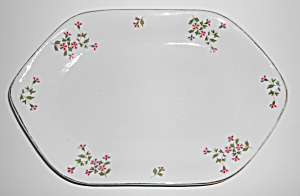 Hertel Jacob Porcelain Red/white Petunia 14in Platter
