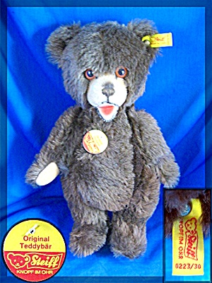 12 Inch Steiff Dark Brown Teddy Bear Jointed W/ Growler