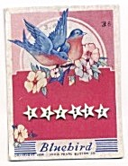Bluebird Stars Set Of 6