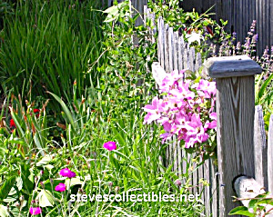 Boundaries - Garden Fence No. 1 Photograph-ltd Edition