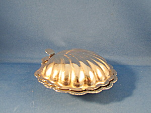 Silver Clam Case Candy Dish