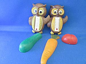 Fruit And Owl Thermometer Magnets