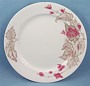 Alfred Meakin - English Ironstone - Decorated Plate