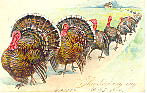 Raphael Tuck Thanksgiving Day Postcard P19776 Series 123