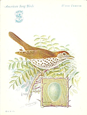 Singer Sewing Machines Wood Thrush Trade Card Tc0233